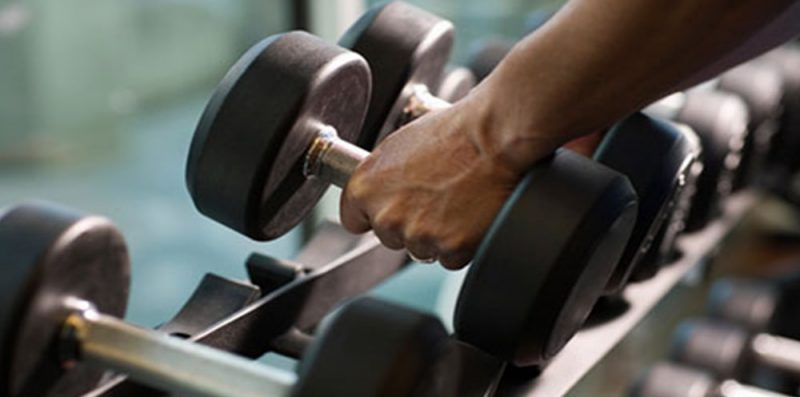 Build muscle and burn fat in the gym