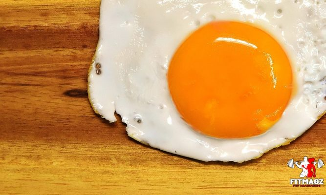 The relationship of egg yolk to heart disease